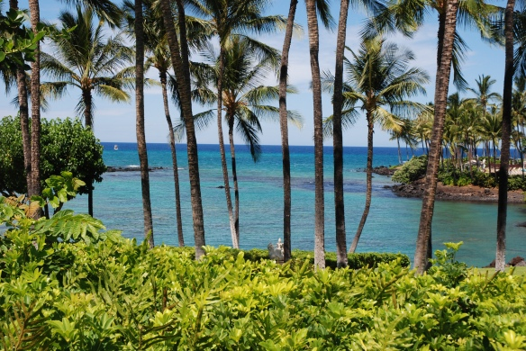Our favorite vacation spot - the northwestern shore of Hawai'i, just north of Kona.