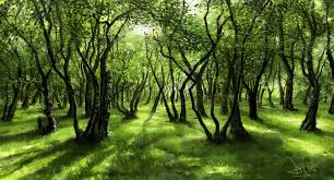 trees-green-sunlight